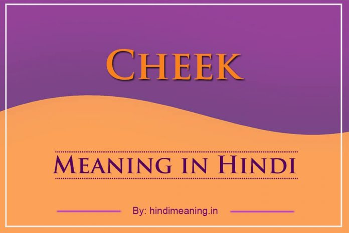 Cheek Meaning in Hindi
