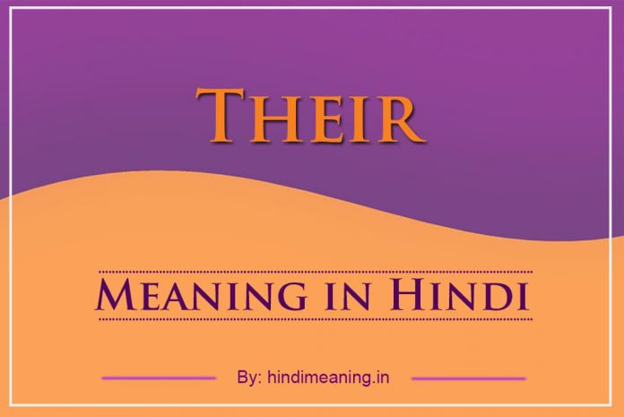 Their Meaning in Hindi