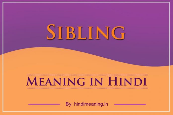Sibling Meaning in Hindi