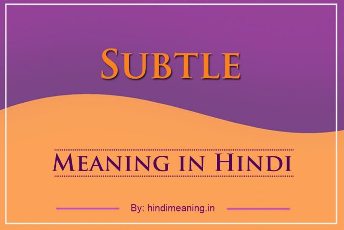 Subtle Meaning in Hindi
