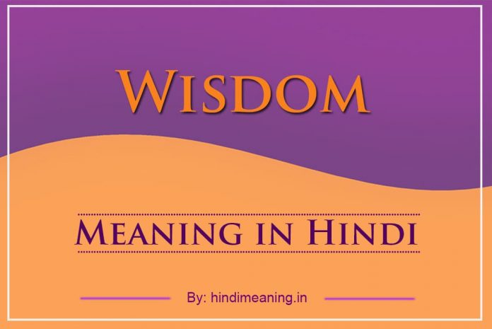 Wisdom Meaning in Hindi